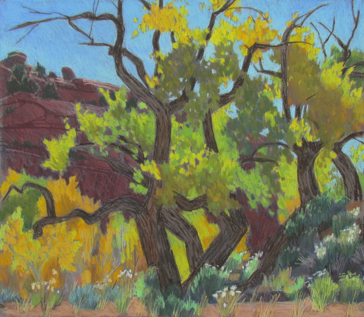 Scotty Mitchell, Landscape, Pastel, Cottonwood, Escalante, Boulder, Utah, Artist,
