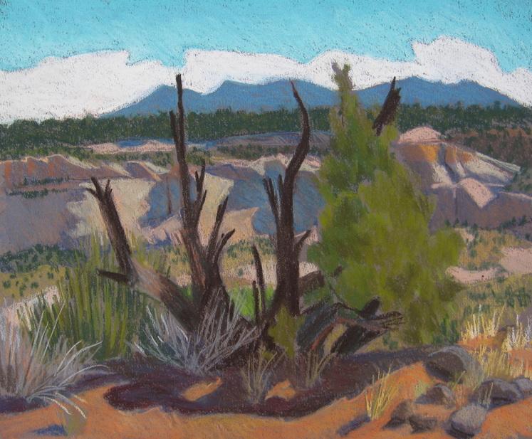 pastel, plein air, Boulder Utah, Scotty Mitchell